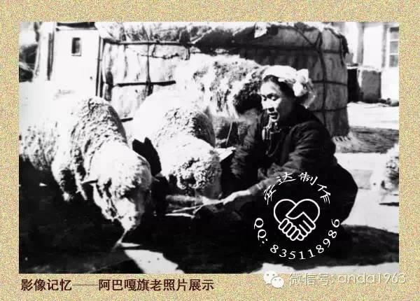 一起穿越回到70年代的苏尼特、阿巴嘎的冬季! 第1张 一起穿越回到70年代的苏尼特、阿巴嘎的冬季! 蒙古文化