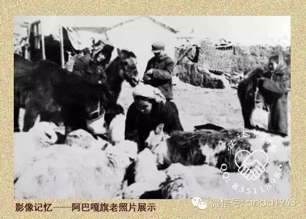 一起穿越回到70年代的苏尼特、阿巴嘎的冬季! 第2张 一起穿越回到70年代的苏尼特、阿巴嘎的冬季! 蒙古文化