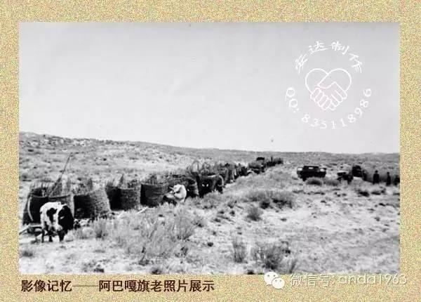 一起穿越回到70年代的苏尼特、阿巴嘎的冬季! 第12张 一起穿越回到70年代的苏尼特、阿巴嘎的冬季! 蒙古文化