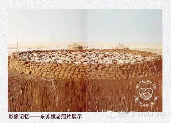 一起穿越回到70年代的苏尼特、阿巴嘎的冬季! 第16张 一起穿越回到70年代的苏尼特、阿巴嘎的冬季! 蒙古文化