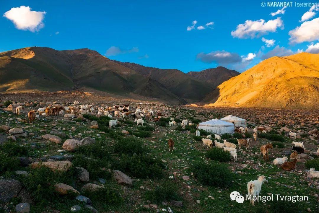 ᠮᠣᠩᠭᠤᠯ ᠰᠡᠭᠦᠳᠡᠷ- ᠴ᠂ ᠨᠠᠷᠠᠨᠪᠠᠲᠤ 第21张 ᠮᠣᠩᠭᠤᠯ ᠰᠡᠭᠦᠳᠡᠷ- ᠴ᠂ ᠨᠠᠷᠠᠨᠪᠠᠲᠤ 蒙古文化