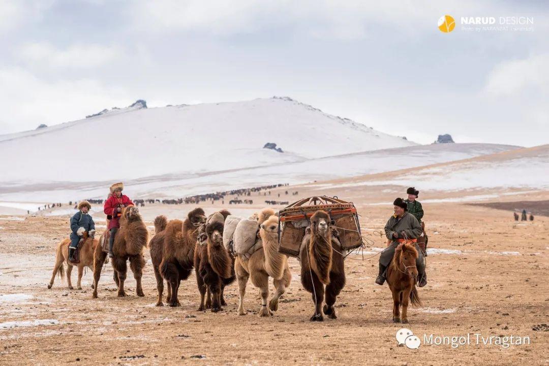 ᠮᠣᠩᠭᠤᠯ ᠰᠡᠭᠦᠳᠡᠷ- ᠴ᠂ ᠨᠠᠷᠠᠨᠪᠠᠲᠤ 第50张 ᠮᠣᠩᠭᠤᠯ ᠰᠡᠭᠦᠳᠡᠷ- ᠴ᠂ ᠨᠠᠷᠠᠨᠪᠠᠲᠤ 蒙古文化