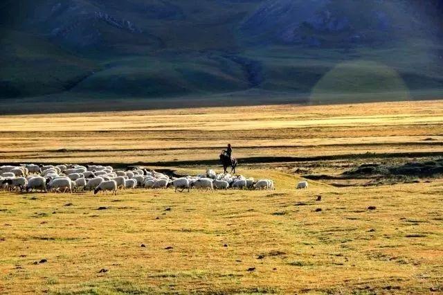 ᠣᠲᠣᠷ ᠊ᠤᠨ  ᠠᠳᠤᠭᠤᠴᠢᠨ 第3张 ᠣᠲᠣᠷ ᠊ᠤᠨ  ᠠᠳᠤᠭᠤᠴᠢᠨ 蒙古音乐
