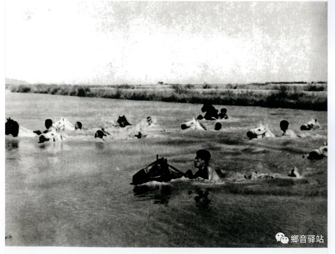 写在纪录片《内蒙古骑兵》开播之际——我区著名作家萨仁托娅 第6张 写在纪录片《内蒙古骑兵》开播之际——我区著名作家萨仁托娅 蒙古文化