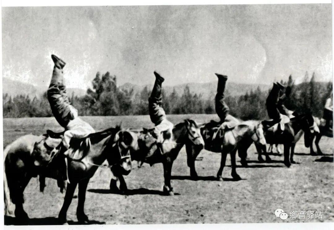写在纪录片《内蒙古骑兵》开播之际——我区著名作家萨仁托娅 第9张 写在纪录片《内蒙古骑兵》开播之际——我区著名作家萨仁托娅 蒙古文化