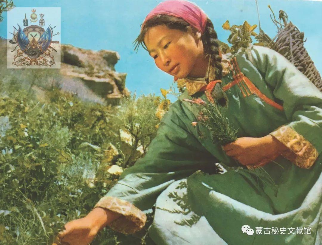 内蒙古教育自治区成立30年画册 第42张 内蒙古教育自治区成立30年画册 蒙古文化