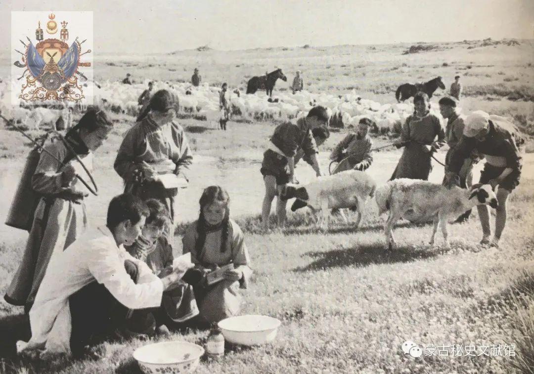 内蒙古教育自治区成立30年画册 第44张 内蒙古教育自治区成立30年画册 蒙古文化