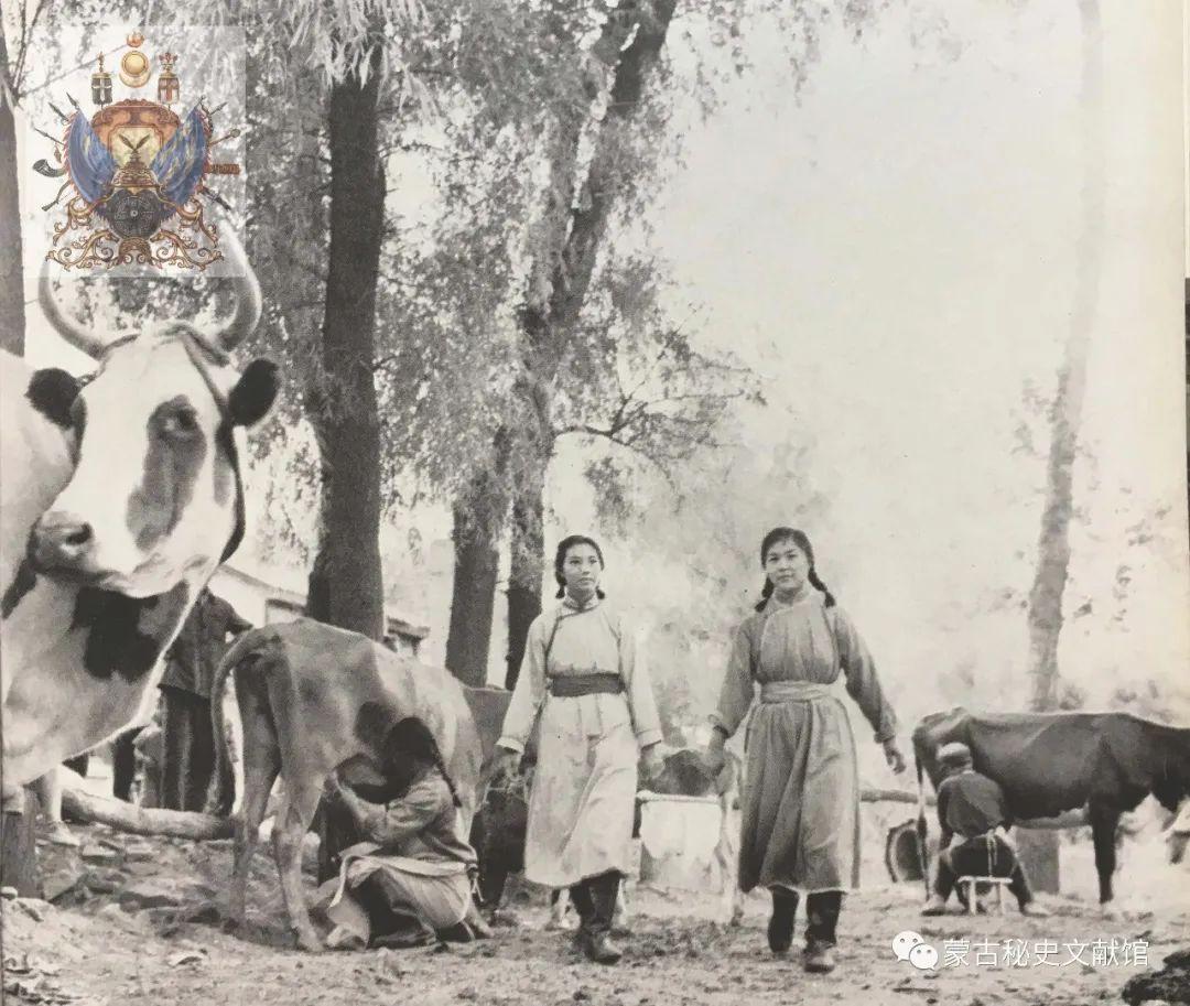 内蒙古教育自治区成立30年画册 第46张 内蒙古教育自治区成立30年画册 蒙古文化