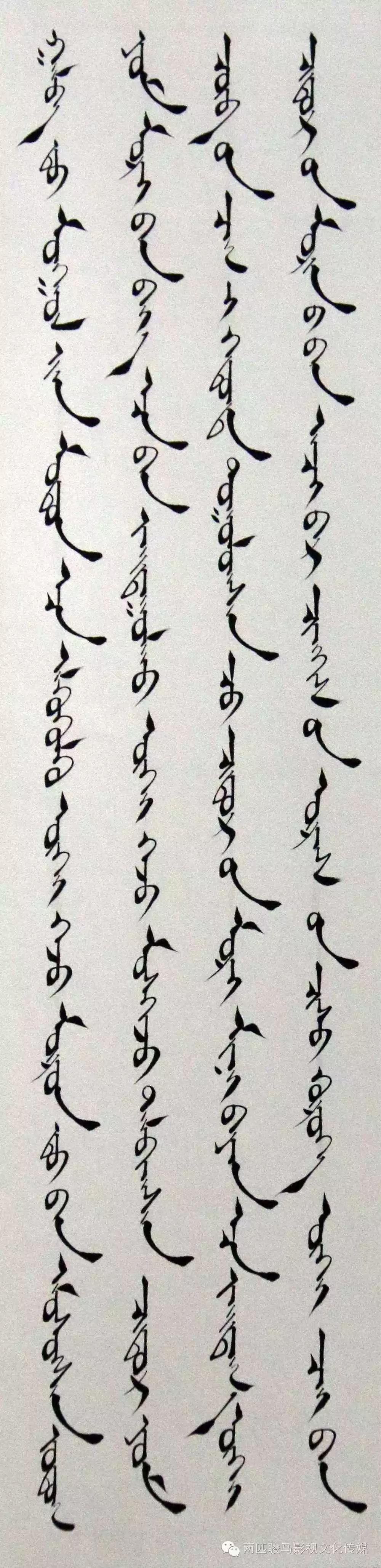 【艺术】2016年通辽市蒙古文书法大赛获奖作品欣赏